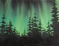 Starry Northern Lights